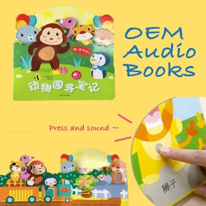 Customized Audio Books for children